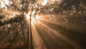 Spiritueel ontwaken
